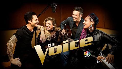 The Voice US: primeiras impressões da 14ª temporada